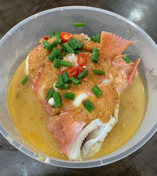 ZS fish 1