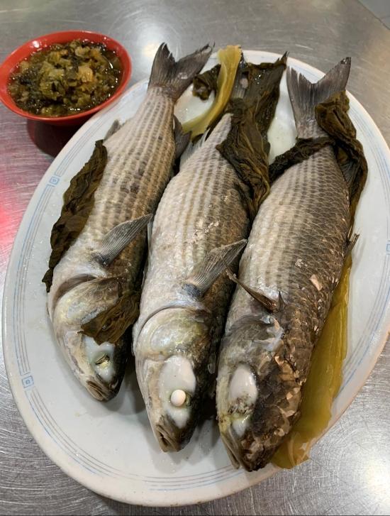 ZS fish 2